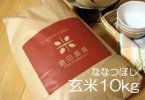 【玄米】令和2年産 北海道産 ななつぼし 玄米10kg袋