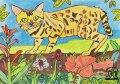 絵っ版画?!<BR>「熱帯雨林のベンガル」(画:Alice)