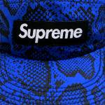 Supreme Nylon Soft Bill Snake Camp Cap(Blue)/シュプリーム ナイロン ソフトビル キャンプキャップ<img class='new_mark_img2' src='https://img.shop-pro.jp/img/new/icons51.gif' style='border:none;display:inline;margin:0px;padding:0px;width:auto;' />