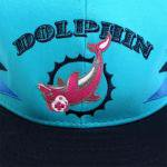 PINK DOLPHIN CLOTHING SNAPBACK CAP(BLUE/BLACK)/ピンクドルフィン スナップバック キャップ
