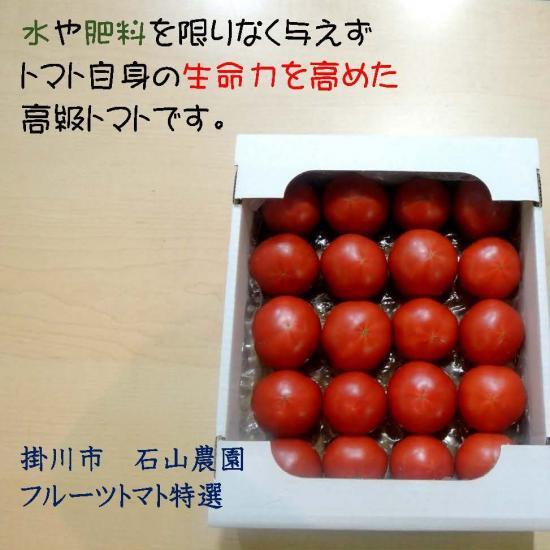 トマト フルーツ