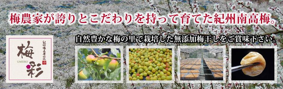 みなべの梅農家直売の梅干,備長炭,南高梅/梅彩グループ/うめいろグループ