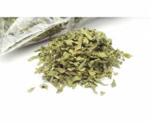 桑の葉茶 国産 70g