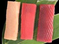 [NA-3]南マグロ赤身・メバチマグロ赤身・トロビンチョウセット