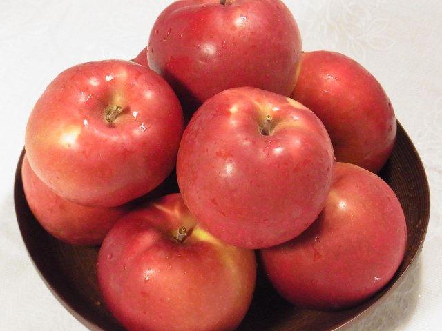 【早期予約】オホーツク産「旭」/昔懐かし甘酸っぱいりんご LLサイズ 4Kg