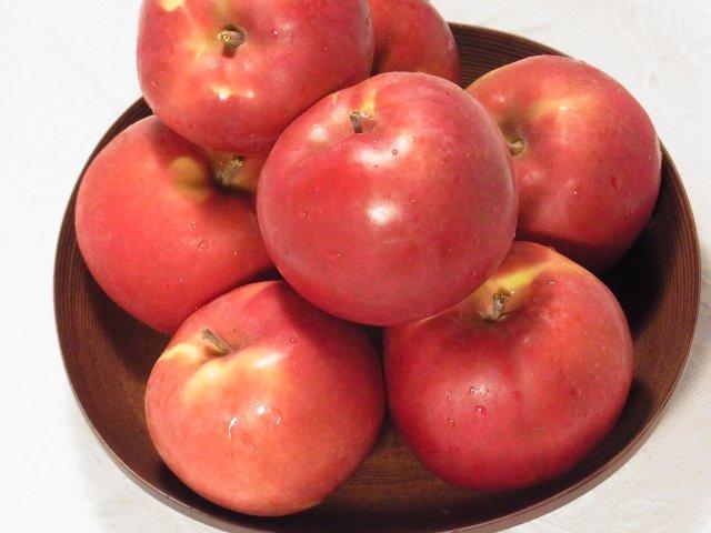 【早期予約】オホーツク産「旭」/昔懐かし甘酸っぱいりんご LLサイズ 8Kg