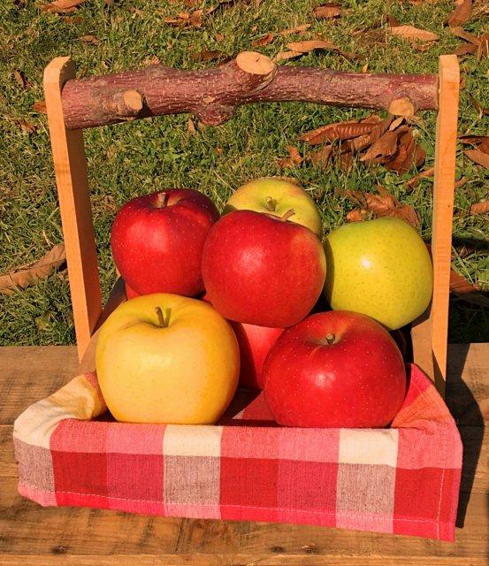 オホーツク産りんごの詰合せ 【プレミアム】 4種以上13〜23玉 約5Kg【クール便】