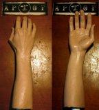 ディスプレイにも! シリコン製 タトゥー練習用 合成アーム 腕