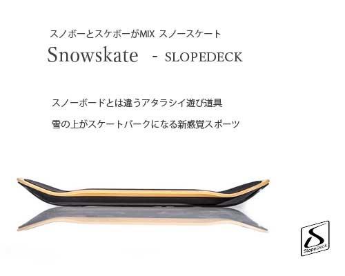 カナダ発◆スノボーとスケートがMIX「Sn...