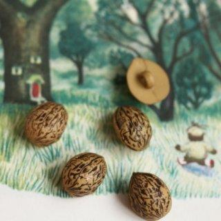 ボタン 木の実