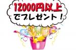 12000円以上お買い上げでプレゼント!