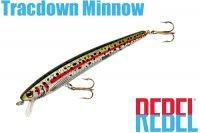レーベル トラックダウンミノー 3/8oz(TD57 540)Rainbow Trout