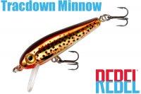 レーベル トラックダウンミノー 3/32oz(TD49 494)Slick Brown Trout