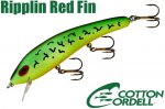 リップリンレッドフィン<br>(C85 69)