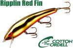 リップリンレッドフィン (C85 98)Gold/Orange