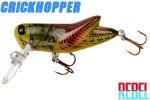 クリークホッパー 3/32oz(F73 314)SUMMER HOPPER