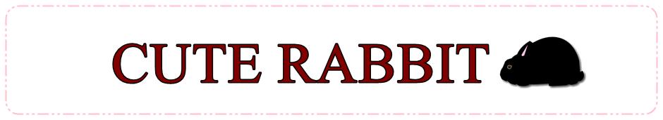 うさぎ専門店 CUTE RABBIT
