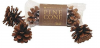 <img class='new_mark_img1' src='//img.shop-pro.jp/img/new/icons1.gif' style='border:none;display:inline;margin:0px;padding:0px;width:auto;' />KAWAI PINE CONE(パインコーン)