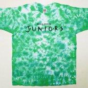 1990年代製 USA FRUIT OF THE LOOM フルーツオブザルーム Tie Dye T-shirt タイダイTシャツ 淡緑/白 サイズ:XL グレード:AB