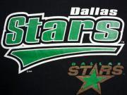U.S.A. 80's〜90's ダラス・スターズ Dallas Stars アイスホッケー スウェットシャツ ブラック L(16)