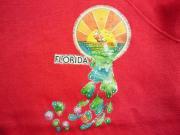 U.S.A. 70's Sportswear スウェットシャツ FLORIDA ラメプリント レッド M(38-40)