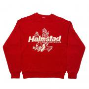 1980年代製 U.S.A. PRINT BOY'S SWEAT SHIRT HALMSTAD ELEMENTARY プリント スウェットシャツ グレード:A カラー:レッド サイズ(ボーイズ)