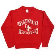 1980 〜 90年代 U.S.A. オールド プリント スウェットシャツ グレード:A カラー:赤 サイズ:キッズ12