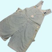 U.S.A. 1990's Pointer Brand ポインターブランド オーバーオール ショートパンツ ブルー色系 W34