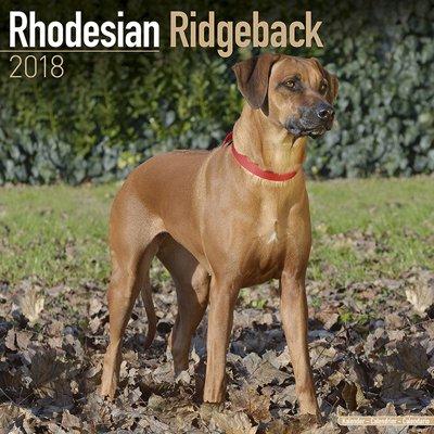 2018ペットカレンダー 106「ローデシアンリッジバック」 (英国製)