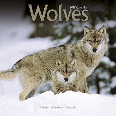 2018ペットカレンダー 123「ウルフ/オオカミ」 (英国製)
