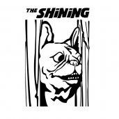 ★  SHiNiNG