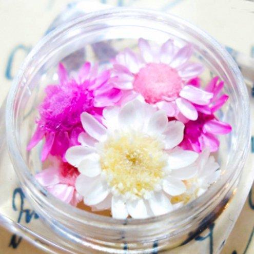 【ドライフラワー】9輪 3色ミックス スターフラワー 《スプリング》 [小花,プリザーブドフラワー,花材,flower,ピンク,春]