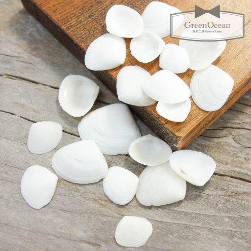 ●今だけ値下げ●【貝殻セット】約10g ちっちゃな白い貝がら 《ホワイト》 [sea,シェル,海素材,マリン,…