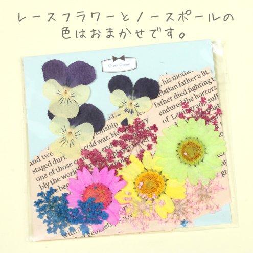 【福袋】15枚 カラーおまかせ押し花セ...