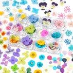 ◎【福袋】お得盛り盛り♪ カラーはお任せ12種92枚&アジサイ花びら30枚 押し花・ドライフラワーセット [スターフラワー,レースフラワー,アジサイ,あじさい,ビオラ]