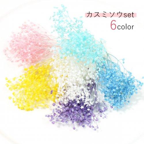 【ドライフラワー】6色セット カスミ...
