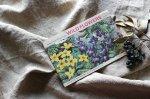 ◎△お急ぎ便不可△ イギリスアンティーク ピクチャーカード WILD FLOWERS カードアルバム 2/2