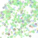 【封入】ミックスホログラム GreenOceanオリジナルアイテム 《サマーミント》 [ホロ,ネイル,レジン,パーツ,素材,バラエティ]
