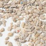 【封入素材】20g (5mm程度) サンゴのかけらと海の石[ハーバリウム,sea,シェル,海素材,マリン,夏]