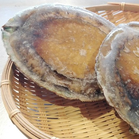 冷凍赤アワビ1kg(訳あり)