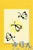 ぽちカード 花に蝶