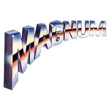 MAGNUM マグナム