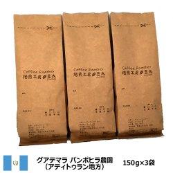 グァテマラスペシャルティ<200g×2袋>アティトゥラン