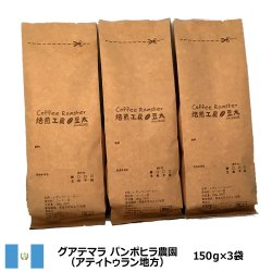 グァテマラスペシャルティ<150g×3袋>アティトゥラン