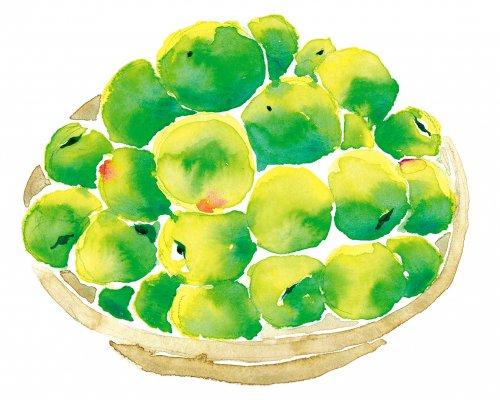 ◆2020年産予約分◆ 青梅【紀州南高梅】大粒〜中粒 10キロ 送料無料梅酒梅シロップジュース用