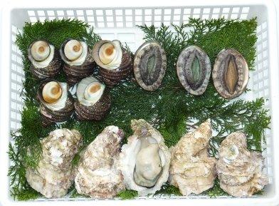 夏の岩牡蠣バーベキューセット