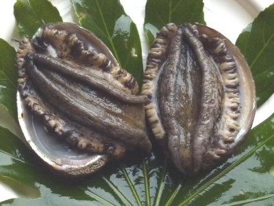 天然黒アワビ(L)2個セット