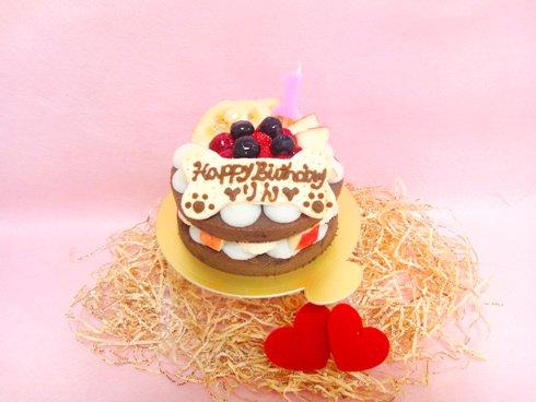 【わんわんの日セール対象商品】◆Happy ガトー・デ・ショコラ 【ささみ】◆犬用ケーキ,猫用ケーキ,ペット用ケーキ,アレルギー…