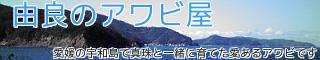 活鮑(あわび)の通販販売店/産地直送〜愛媛宇和島【由良のアワビ屋】〜