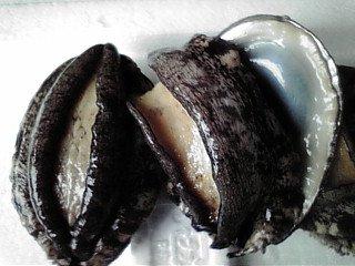 【養殖活アワビ70(1個)】(殻長約80ミリ-約70g)